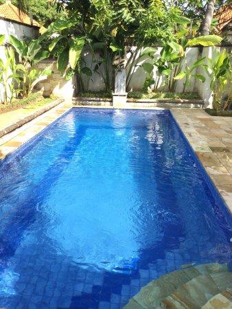 Private pool in honeymoon villa.