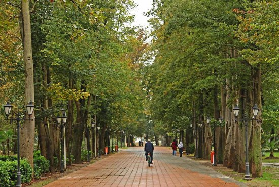 Rasht, อิหร่าน: Mohtasham Garden - Overview Picture