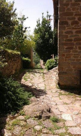 Borgo di Carpiano: IMG-20160626-WA0025_large.jpg