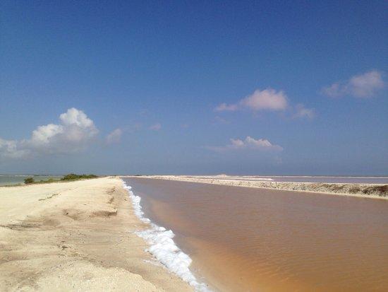 Rio Lagartos Adventures : photo2.jpg