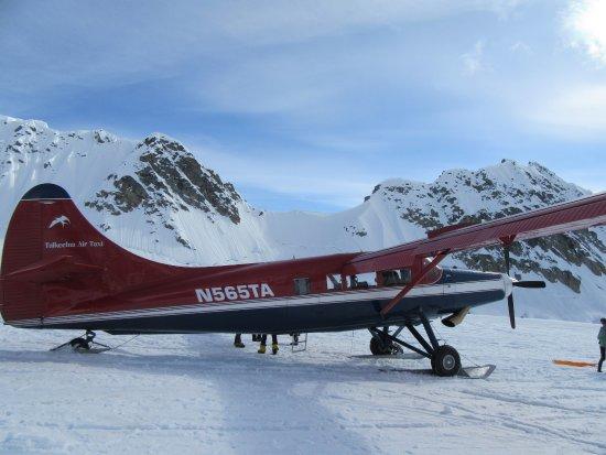 Talkeetna Air Taxi Foto