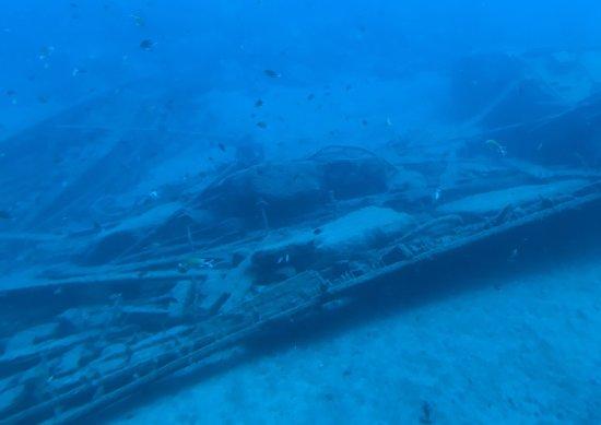 Submarine Safaris SL: photo4.jpg