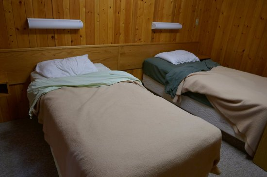 Pine Bungalows: The lime green and dark green bedsheets in the same room!