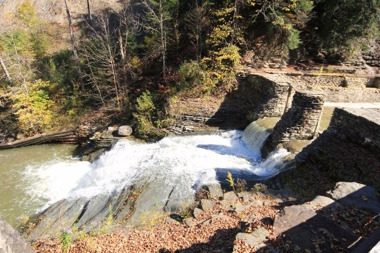 Dansville, NY: Another waterfall