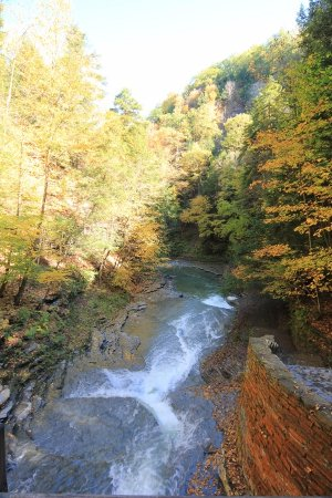 Dansville, NY: The canyon is beautiful!