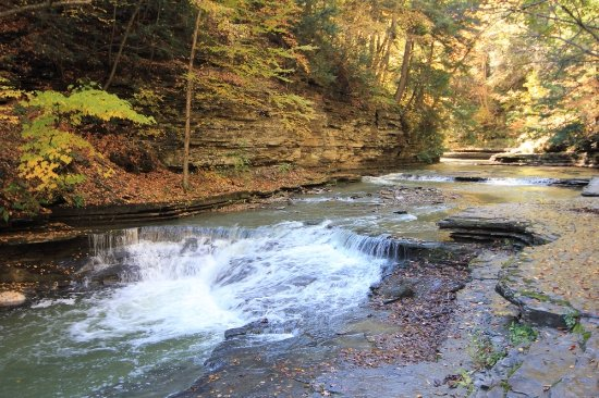 Dansville, NY: A smaller waterfall