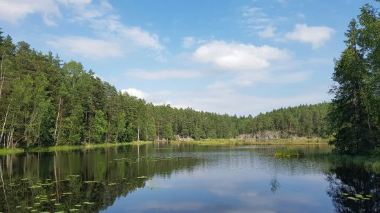 Finlande méridionale, Finlande : 20160625_161038_large.jpg