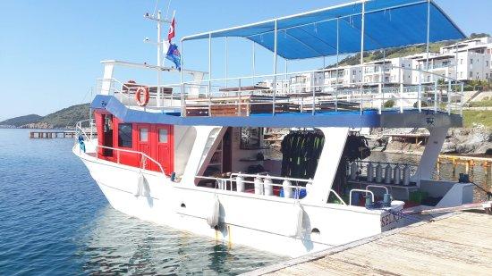 Gümbet, Türkei: The Ultimate Dive Boat - Selkie