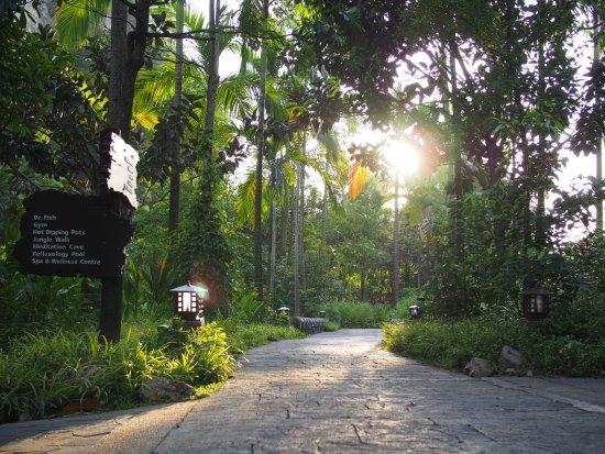 The Banjaran Hotsprings Retreat: Sunset time