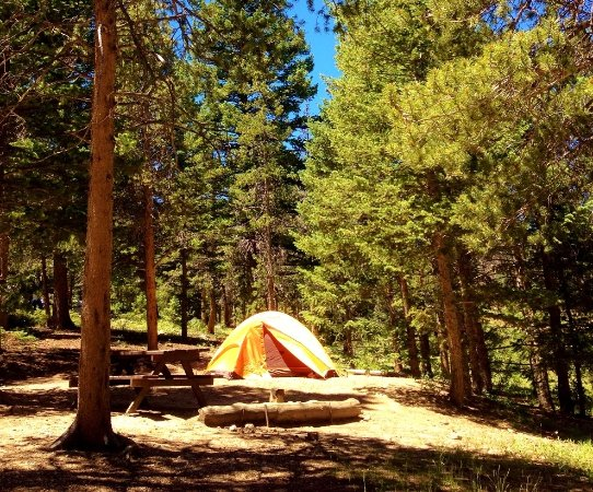 Estes Park Campground at East Portal: Rustic setting in ponderosa forest