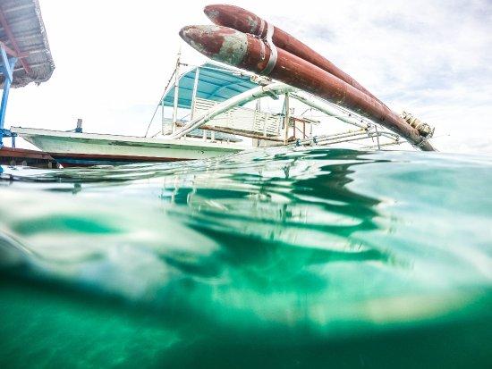 Dos Palmas Island Resort & Spa: boat