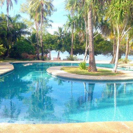 Dos Palmas Island Resort & Spa: pool