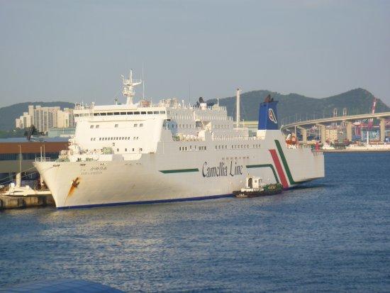 Camellia Line, Hakata Port