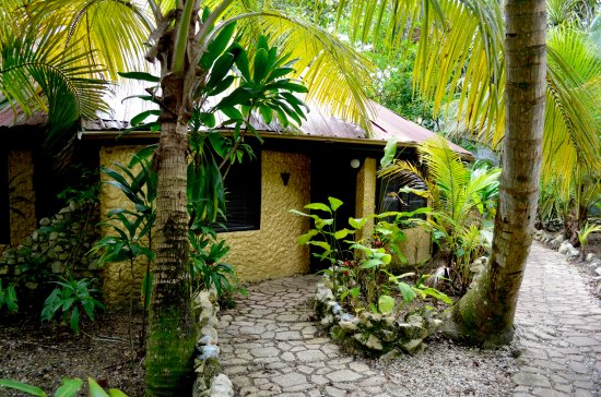 Maruba Resort Jungle Spa: The outside of our little jungle retreat
