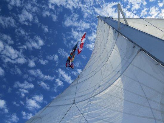 นาไนโม, แคนาดา: Sails up was wonderful