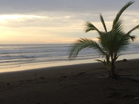 Playa Matapalo, Costa Rica: very relaxing