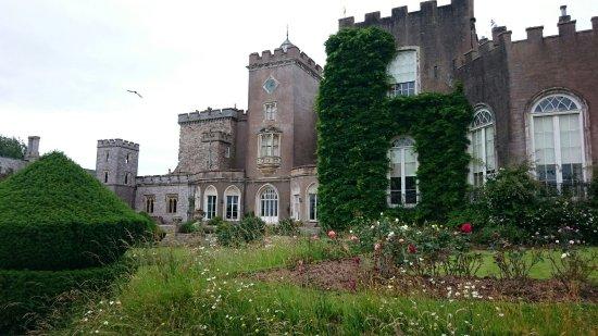 Powderham Castle : DSC_0535_large.jpg