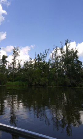 Mccoy S River And Marsh Tours