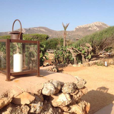Giardino mediterraneo dove poter godere di magnifici - Giardino mediterraneo ...