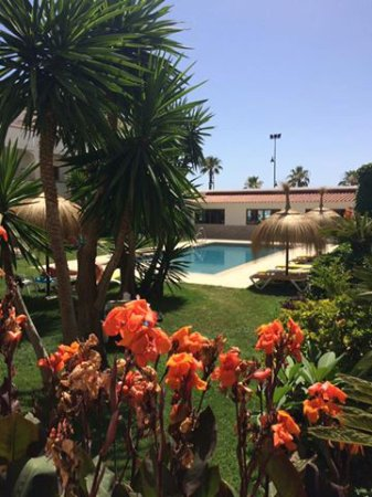 Hotel Tarik: Beautiful garden and Pool
