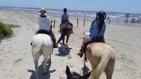 Galveston Island, TX: Heading out towards the water.