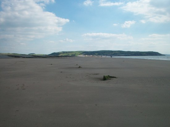 Borth, UK: tree stumps on the beach