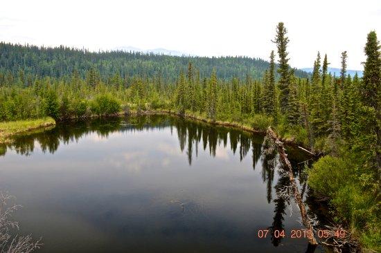 Wrangell-St Elias National Park and Preserve, AK: Wrangell St. Elias NP