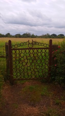 Martock, UK: View across a meadow