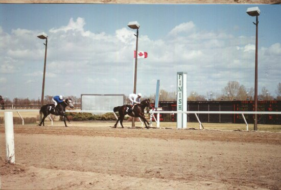 Assiniboia Downs Horse Racing Track