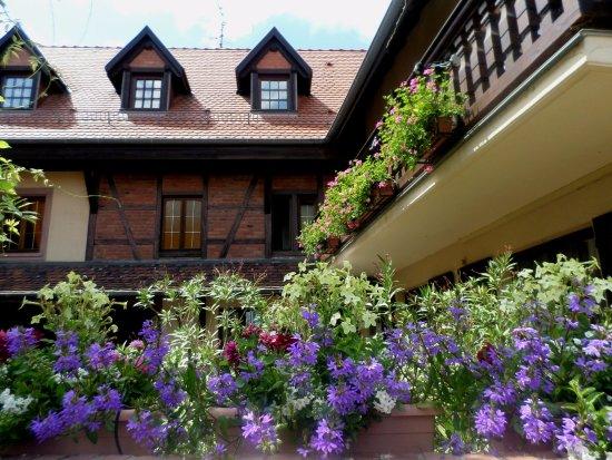 Mittelhausen, France : cour fleurie