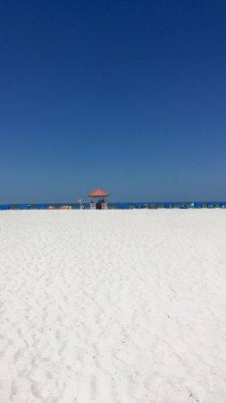 Dolphin Beach Resort: photo2.jpg