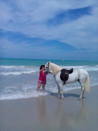Club Magic Life Penelope Beach Imperial: Пляж.