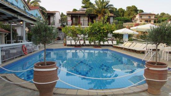Villa Rosa Apartments: Pool area