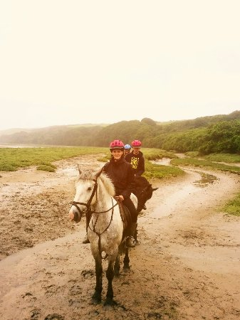Newquay Riding Stables: Horse riding in Newquay 2016_large.jpg