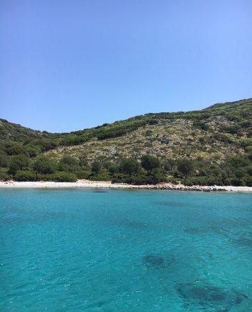 photo0.jpg - Bild von National Marine Park of Alonissos ...