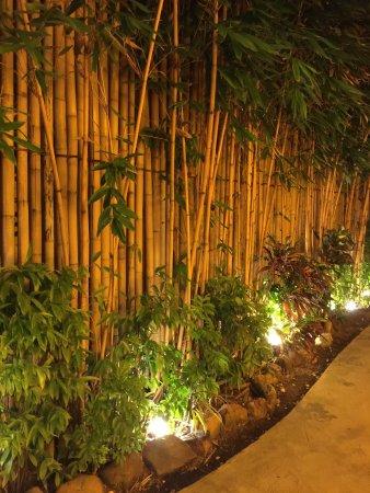 Bamboo House Phuket: Perfect dinner at Bamboo House.
