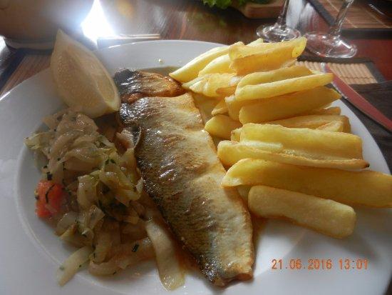La Mendigote: Fera du lac Leman super pas d'arêtes