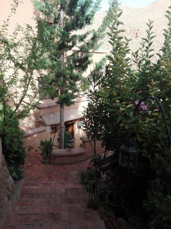 Chez Pierre: IMG_20160626_080342_large.jpg