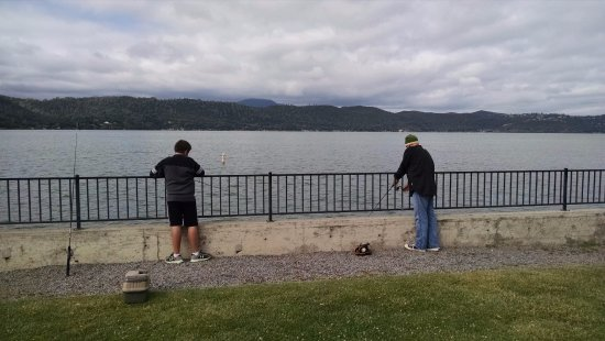 Clearlake, CA: Fishing from grassy area (bring a net or plan on hauling your fish up and over the fence)