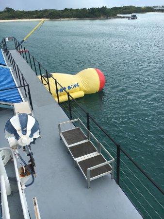 D-Boat Antigua: photo1.jpg