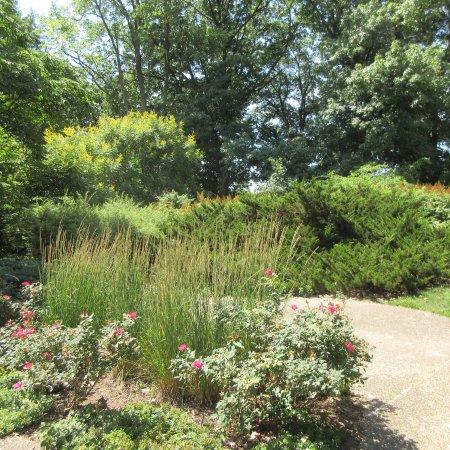 Luthy Botanical Garden, Peoria IL, June 2016