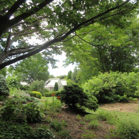 Luthy Botanical Garden: Cottage Garden, Peoria IL, June 2016