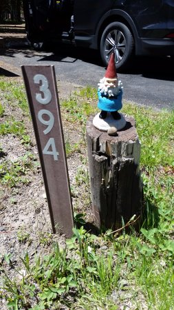 Bridge Bay Campground: Gnome Sweet Gnome...our site nubmer