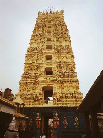 Palakollu, India: This is one in temple in panchha Rama ksheeralu