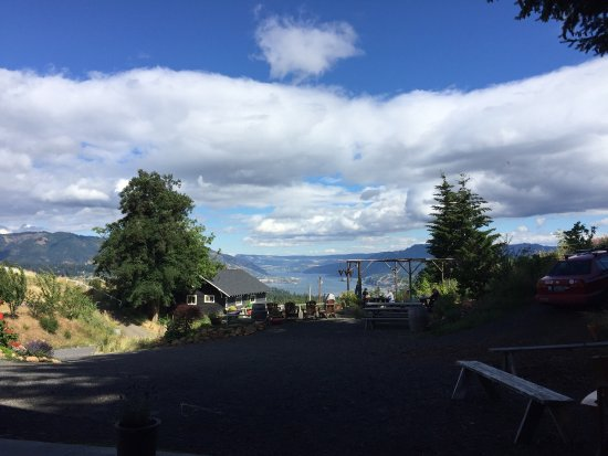 Underwood, Ουάσιγκτον: This was one of my favorite wineries we visited while in the Hood River area. Views are amazing!