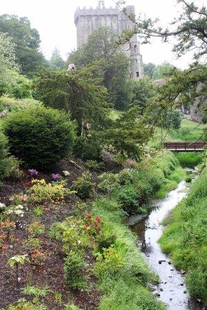 Kastil & Taman Blarney: From the garden