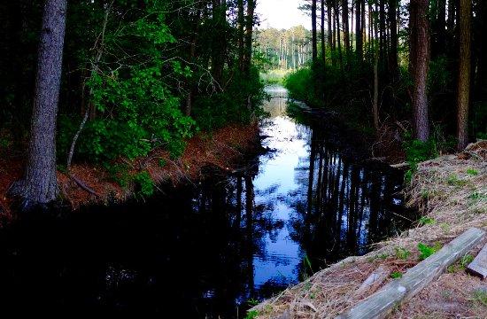 Frankford, DE: Juste à côté coule un ruisseau