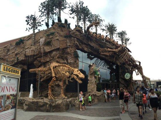 T-Rex: Outside