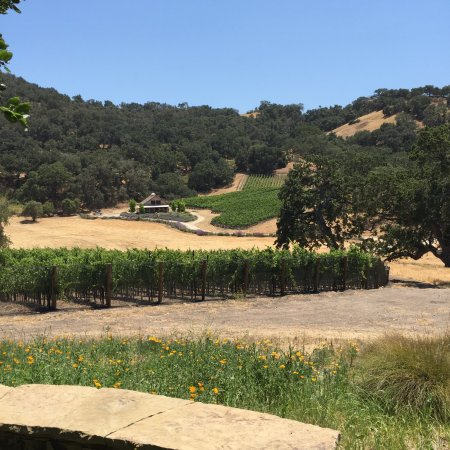 Sustainable Vine Wine Tours : photo0.jpg