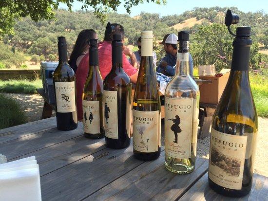 Sustainable Vine Wine Tours : photo1.jpg
